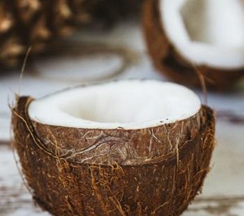 Sattler Kokos Matratzen